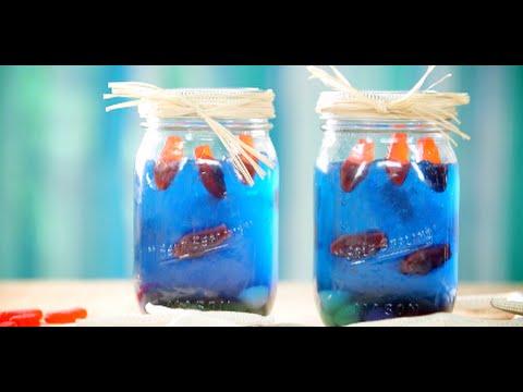 how to make a jell o mason jar aquarium youtube. Black Bedroom Furniture Sets. Home Design Ideas