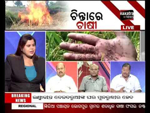 Bitarka: Hapless farmers torch standing crops