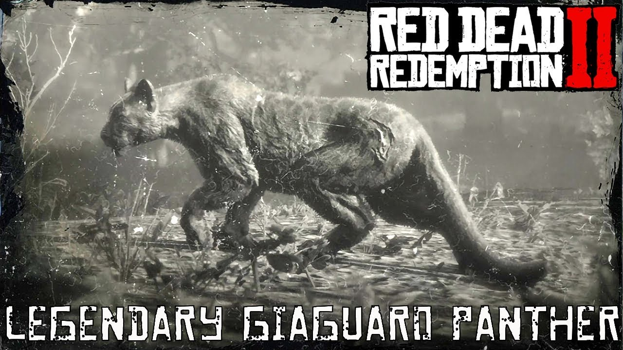 Red Dead Redemption 2 Legendary AnimalsGiaguaro Panther