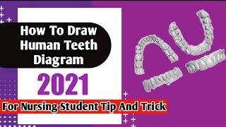 How draw teeth diagram