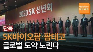 [단독] 최태원 SK그…