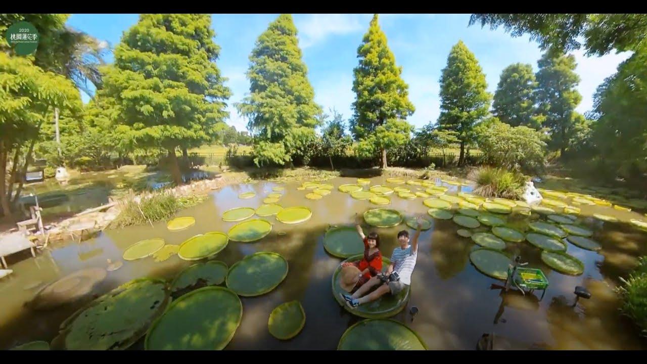 [FUN活動] 2020桃園蓮花季X向陽農場X蓮荷園X莫內的花園 feat大包小包不在家