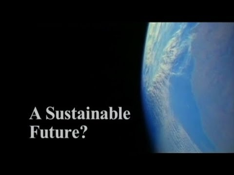CEOs on Sustainability