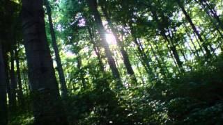 Dub Fragments - Love Is Like Sunshine (Original Mix)