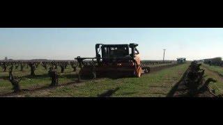 Vineyard Removal (2016 a) - Prime Tech PT-300