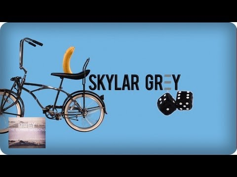 C'mon Let Me Ride Lyric Video by Skylar Grey (ft. Eminem) | Skylar Grey