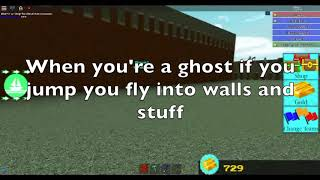 Roblox Build a Boat Ghost Glitch!