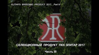 ELITAR'S  BREEDING  PRODUCT - 2017.  Part III
