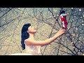Nutcracker: Trailer | English National Ballet の動画、YouTube動画。