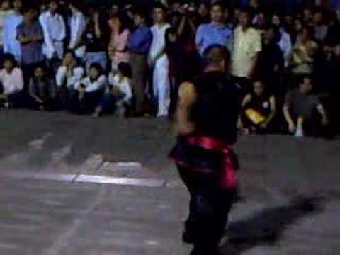 kung fu exhibition south china