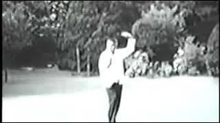 Forme Wu Hao, Hao Shao Ru années 60