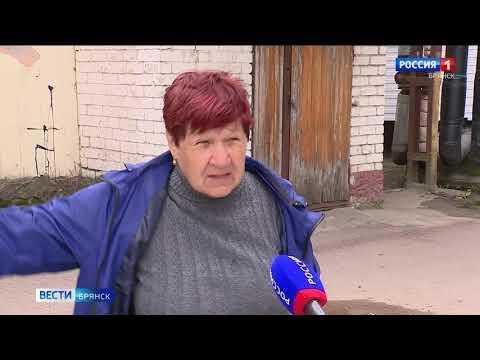 В Брянске в результате нападения бездомных животных погибла женщина