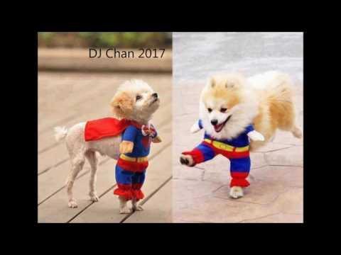 First Summer Mix 2017 DJ Chan