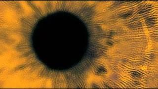 Squint Eye Mangle / Big Carrot / Marc Bolan