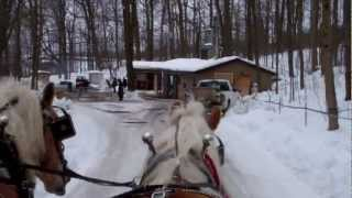 Horse-drawn Wagon Ride At Purple Woods Maple Syrup Festival