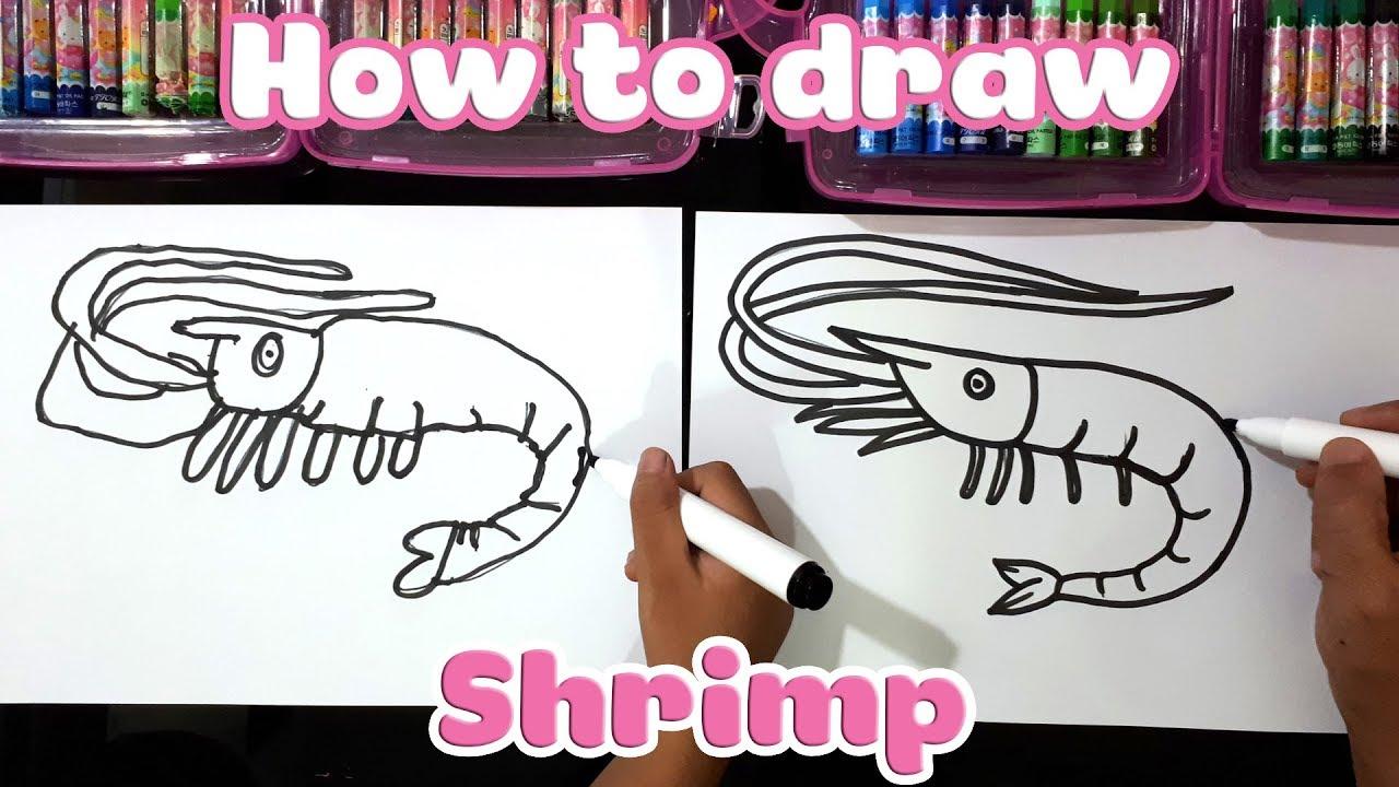 Dạy bé học vẽ con Tôm ♥ How to draw shrimp ♥