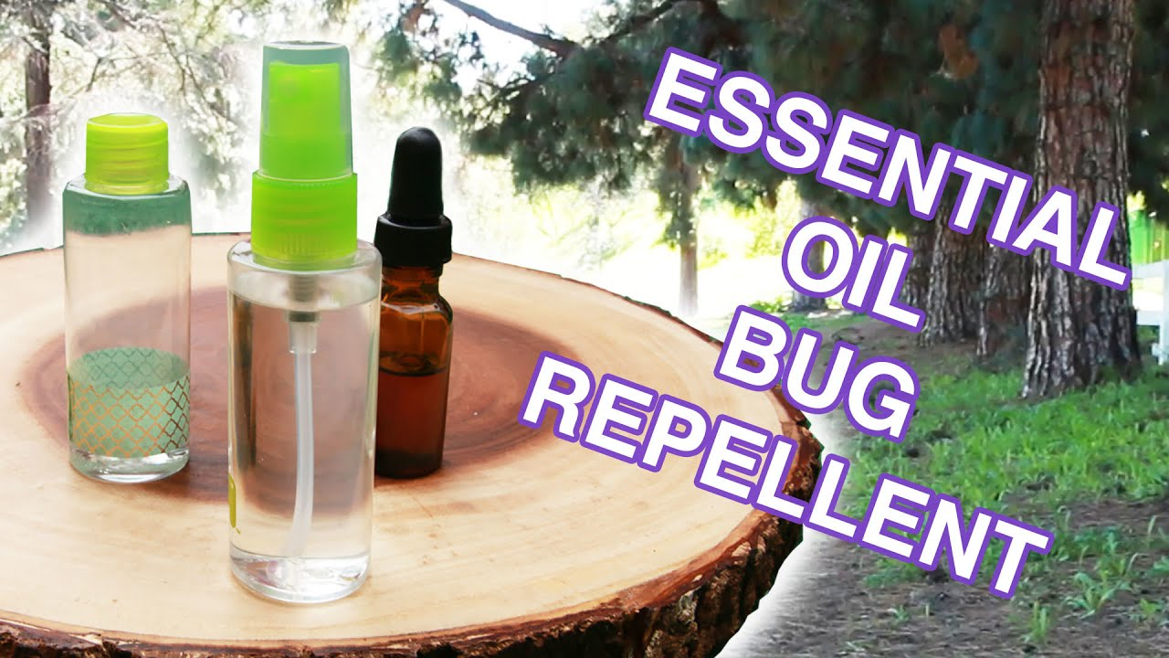 Campers Guide to Essential Oil Bug Repellent: Mosquitoes
