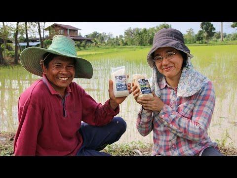 GEPA-Partner Green Net: Fair Trade & Bio-Reis