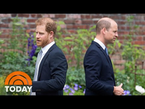 Royal Family 'Flabbergasted' About Prince Harry Writing A Memoir, Journalist Says