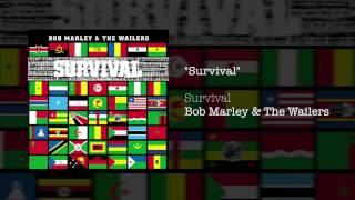 """Survival"" - Bob Marley & The Wailers | Survival (1979)"