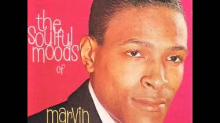 Watch Marvin Gaye Love For Sale video