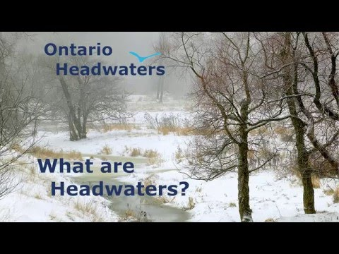 What are Headwaters - Ontario Headwaters Institute