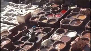 Les tanneries de Fès (Maroc)