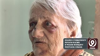 В Рязани собака практически откусила нос пенсионерке. «9 телеканал» Рязань