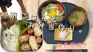 【料理動画♯34】猫に掴まれながら、朝食とお弁当を作っていく【桃色卵焼き】【obento】【猫動画】