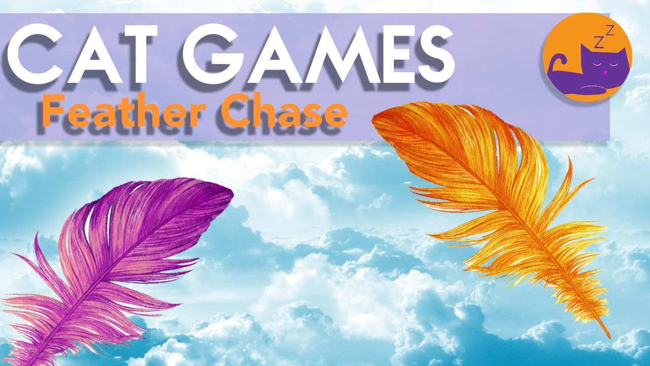 ADDICTIVE Cat Games - Feather Chase (ALL NEW) 🐱