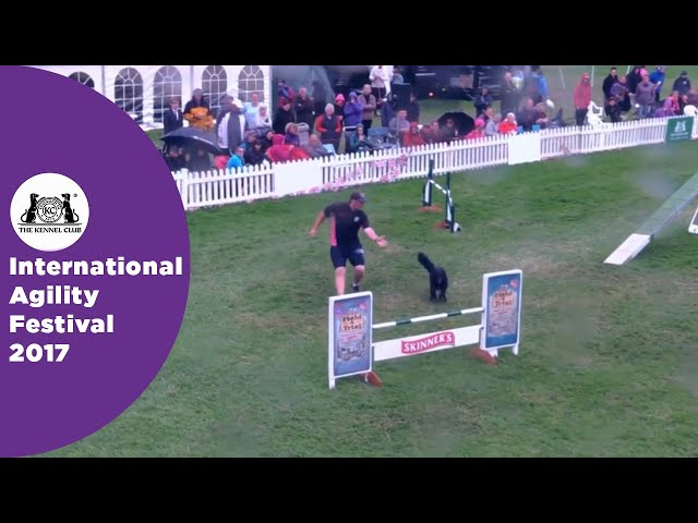 Olympia Quarter Final - G6-7 Senior Agility Part 6 | International Agility Festival 2017