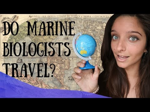 Do marine biologists TRAVEL?