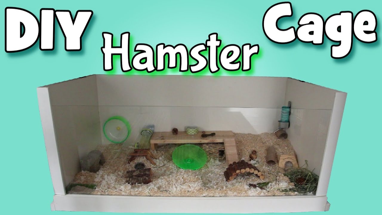Building my diy hamster cage youtube for How to build a hamster cage