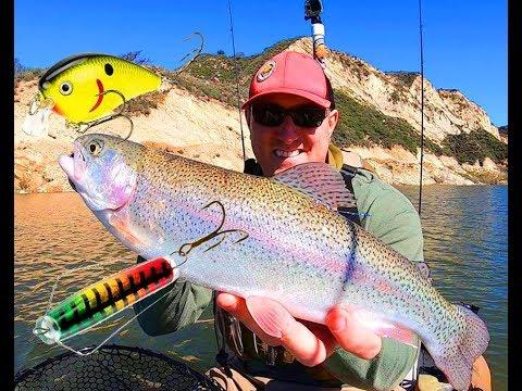 Cachuma Lake Trout Fishing - Crankbaits And Tazmanian Devil
