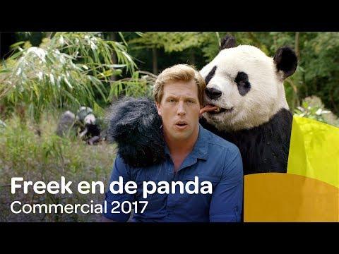 De nieuwe commercial van Reaal met Freek Vonk