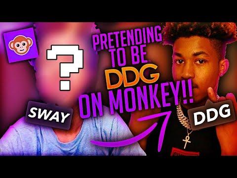 pretending-to-be-ddg-on-monkey-app🙈