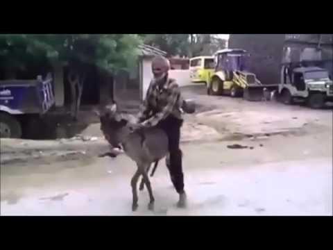 таджики ебут пацан - 13