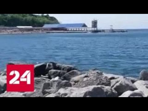 В Крым едет все больше европейцев - Россия 24