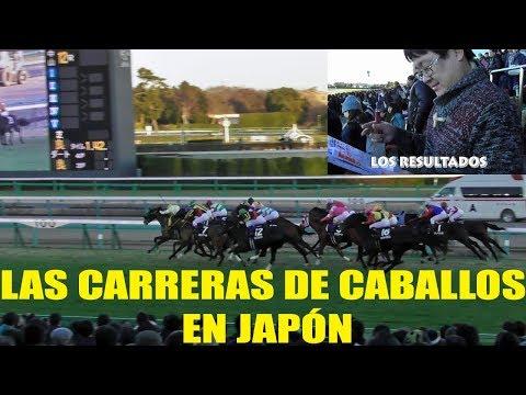 Carreras de caballos en Japón en ESTO HAY EN JAPÓN