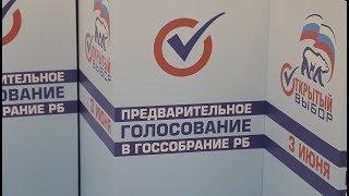 Предварительное голосование в Госсобрание Республики Башкортостан