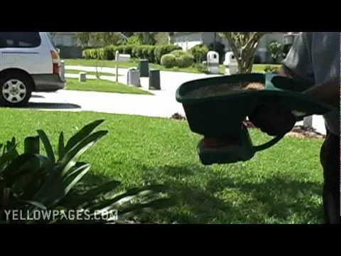 Jacksonville Exterminators Busy Bee Termite & Pest Control