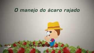 Manejo do Ácaro Rajado PROMIP - MACROMIP MAX E NEOMIP MAX
