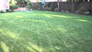 How to Landscape a Big Backyard : Landscaping & Garden Design