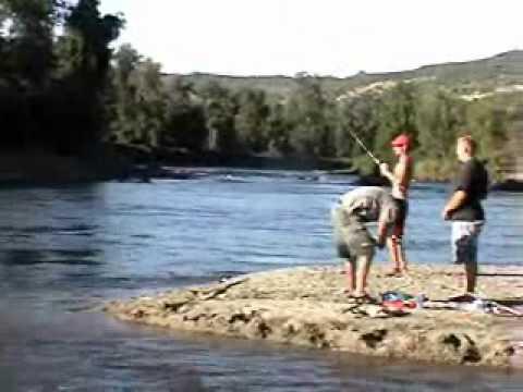 Rogue River fall salmon run in Southern Oregon 2010