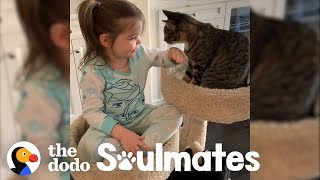 4-Year-Old Girl Has The Purest Friendship With Her Rescue Cats | The Dodo Soulmates