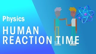 Human Reaction Time | Forces & Motion | Physics | FuseSchool