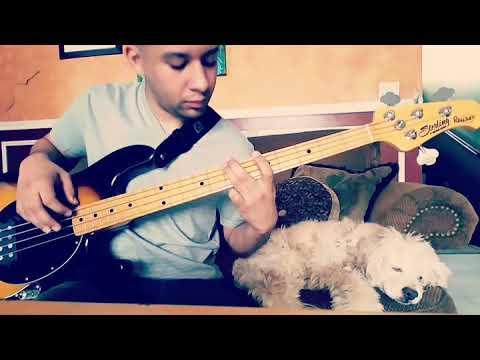Chris Stapleton Tennessee Whiskey Bass Cover Youtube