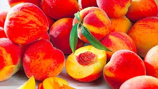 Glacial Vapor: Juicy Peach, Pm Delight, Banana Nut Bread - Reviews
