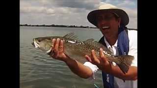 lemon bay april trout