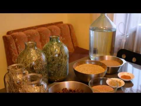 Анис трава - лечебные свойства, противопоказания